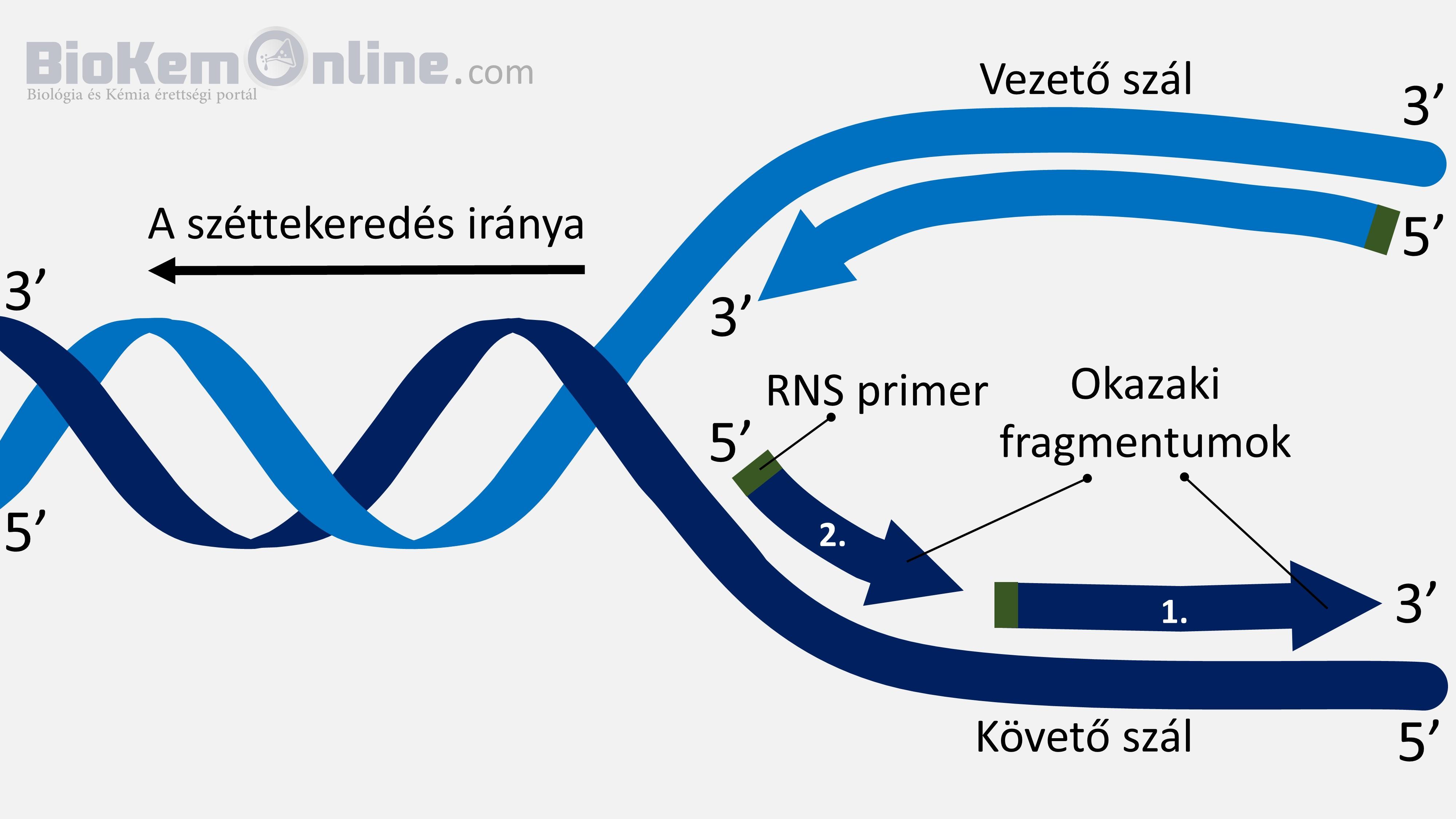 DNS másolás